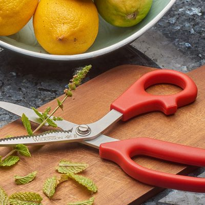 Lightweight Kitchen Scissors
