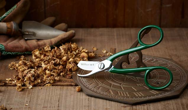 william whiteley outdoor scissors